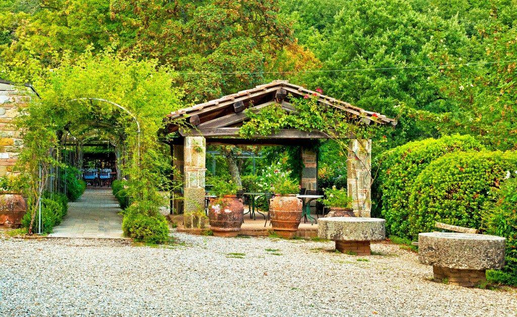 pergola in a garden