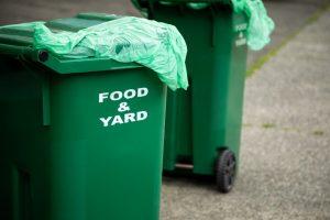 Food and yard scrap bin
