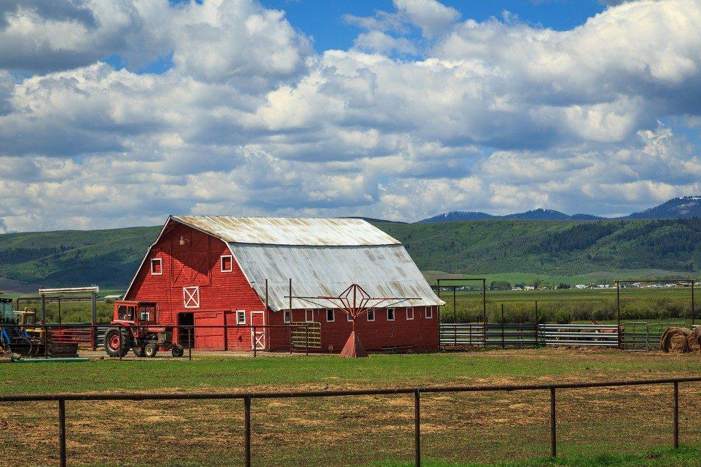 at a barn