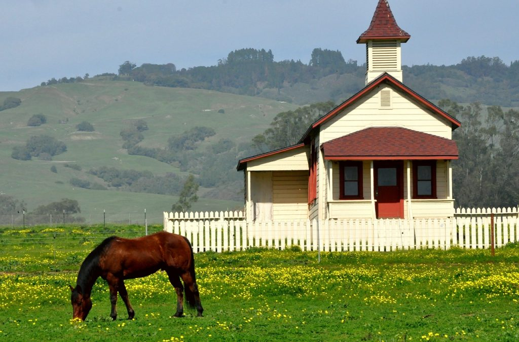 house-with-picket-fence-and-horse