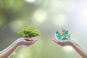 2 hands holding globe and a miniature tree