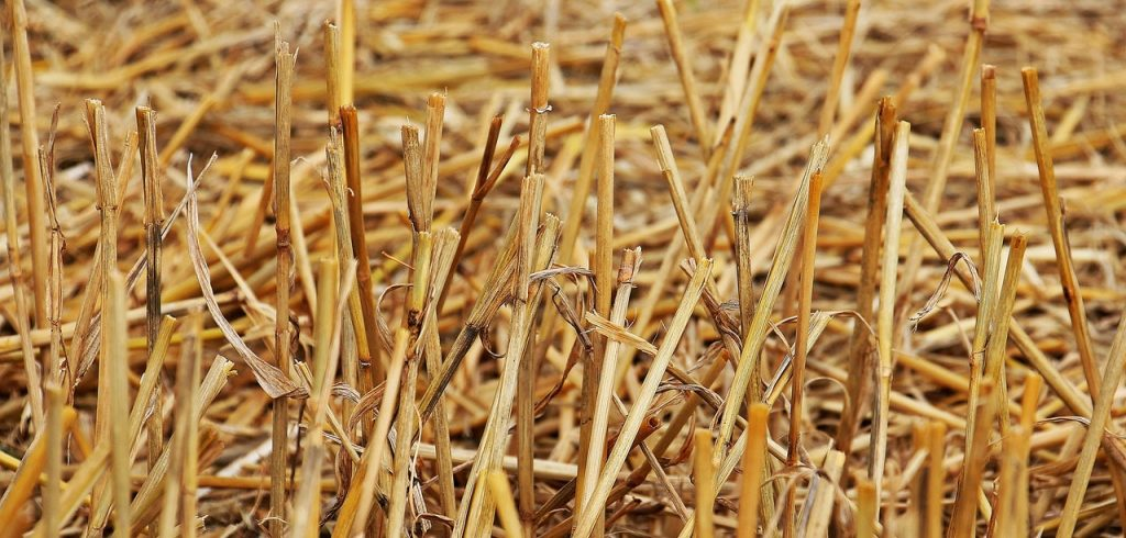 straw material
